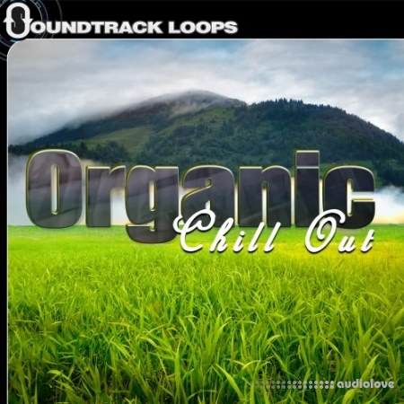 Soundtrack Loops Organic Chill Out WAV