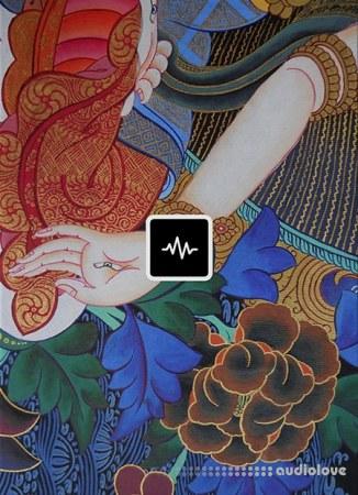 WavSupply JRHITMAKER Lotus WAV