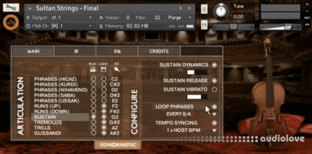 Sonokinetic Sultan Strings v1.3 KONTAKT