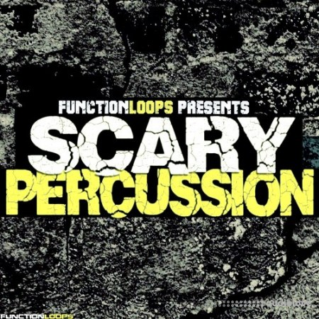 Function Loops Scary Percussion WAV
