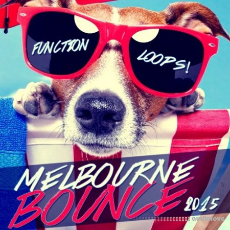 Function Loops Summer Melbourne Bounce 2015 WAV MiDi Synth Presets