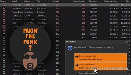 Fakin the Funk v2.0.1.128 WiN