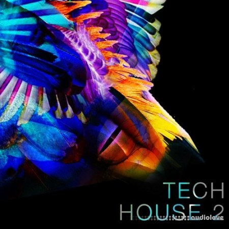 Spf Samplers Tech House 2 WAV