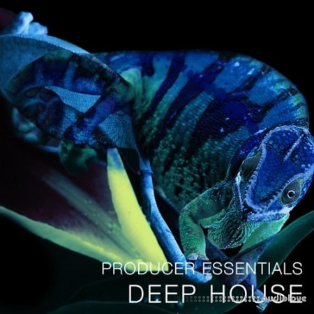 SPF Samplers Producer Essentials Deep House WAV MiDi Synth Presets