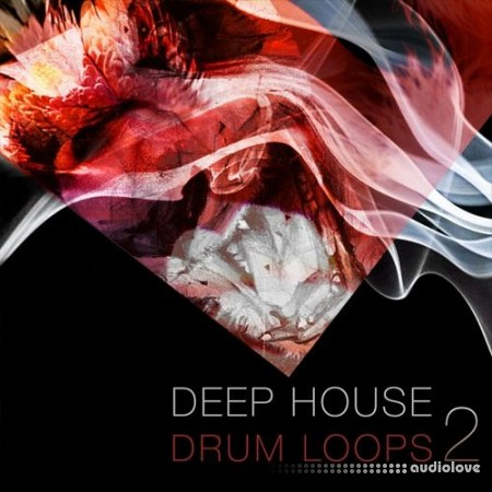 SPF Samplers Deep House Drum Loops 2 WAV
