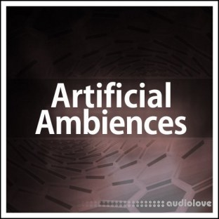 Deep Data Loops Artificial Ambiences