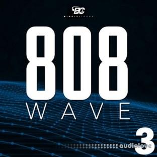 Big Citi Loops 808 Wave 3