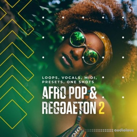 Diginoiz Afro Pop And Reggaeton 2 WAV MiDi