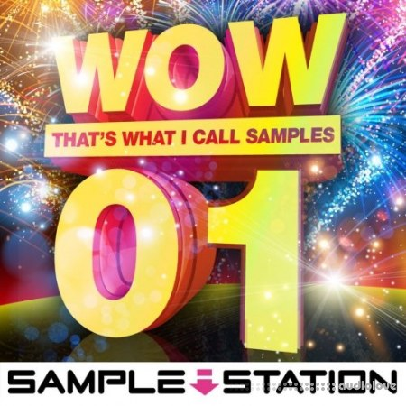 Sample Station Wow EDM Samples WAV