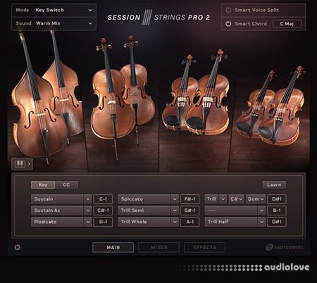 Native Instruments Session Strings Pro 2 v1.0.2 KONTAKT