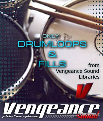 Only Drum Loops and Fills from Vengeance Sound Libraries WAV