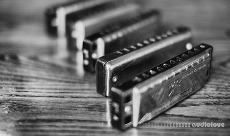 Udemy 30 day challenge learn to play the harmonica in one month TUTORiAL