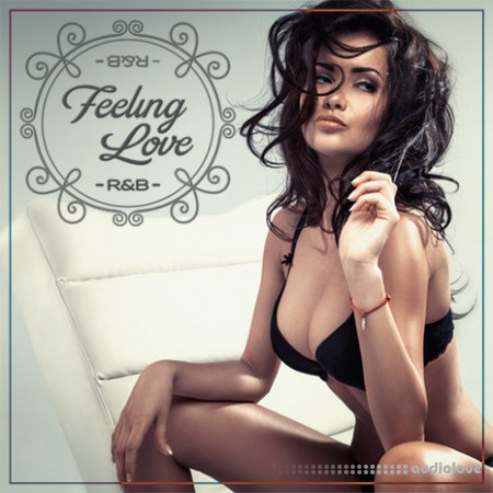 Diginoiz Feeling Love RnB WAV AiFF