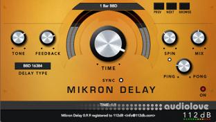 112dB Mikron Delay