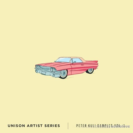 Unison Artist Series Peter Kuli Samples Volume 1 WAV