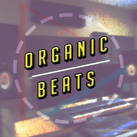 Udemy Creating Organic Beats in FL Studio TUTORiAL