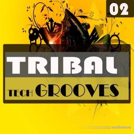 Bingoshakerz Micro Tribal Tech Grooves WAV