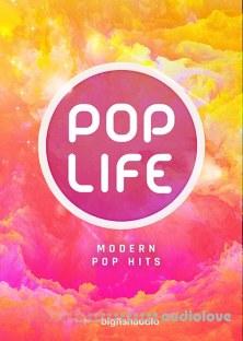 Big Fish Audio Pop Life Modern Pop Hits