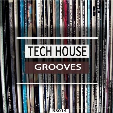 Bingoshakerz Tech House Grooves WAV