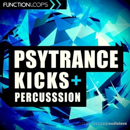 Function Loops Psytrance Kicks And Percussion WAV