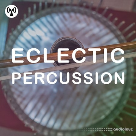 Noiiz Eclectic Percussion WAV