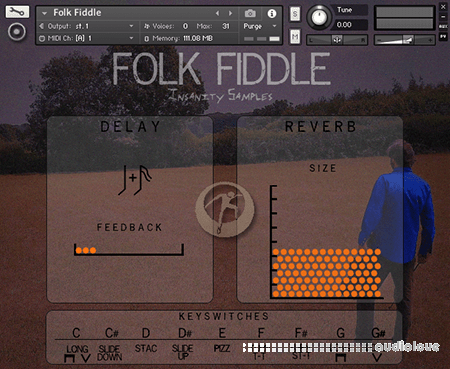 Insanity Samples Folk Fiddle