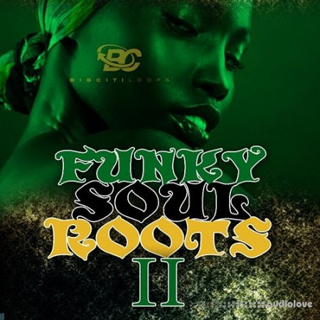 Big Citi Loops Funky Soul Roots 2 WAV MiDi