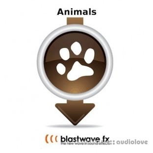 Blastwave FX Animals 01 Sound Effects