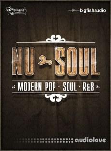 Big Fish Audio Nu-Soul