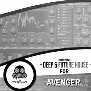 Vandalism Shocking Deep and Future House For Avenger