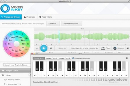 Mixed In Key v.6.1 build 1228.0 / v7.5.1.2376 WiN MacOSX