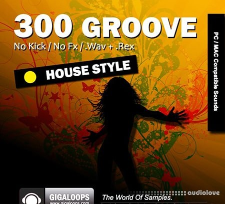 Giga Loops 300 Grooves House Style WAV REX