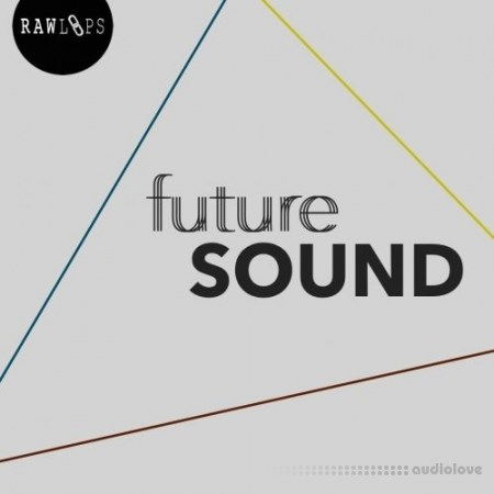 RAW LOOPS Future Sound WAV