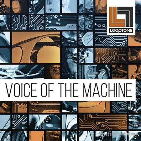 Looptone Voice of the Machine WAV
