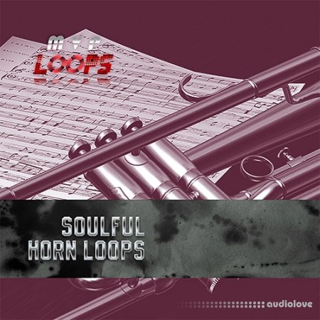 MVP Loops Soulful Horn Licks Vol.1 WAV Maschine