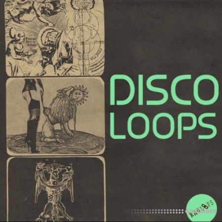Raw Loops Disco Loops WAV