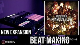 Native Instruments Expansion INFAMOUS FLOW
