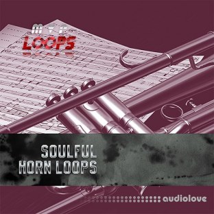 MVP Loops Soulful Horn Licks Vol.1