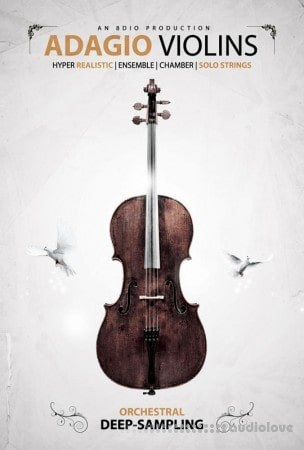 8Dio Adagio Violins v1.1 KONTAKT