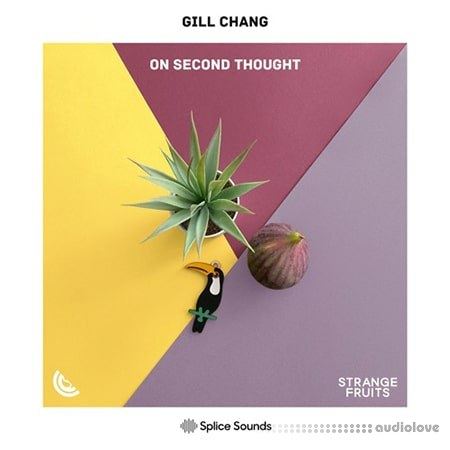 Splice Gill Chang On Second Thought WAV