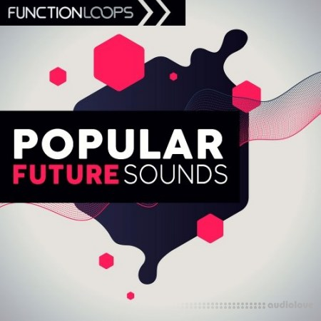 Function Loops Popular Future Sounds WAV MiDi Synth Presets