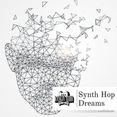 Rankin Audio Synth Hop Dreams WAV
