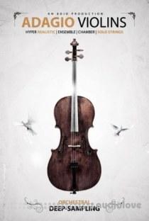 8Dio Adagio Violins