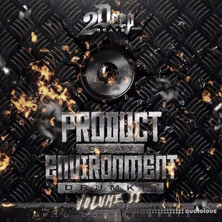 2DEEP Product Of My Environment Vol.2 WAV