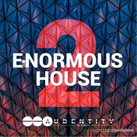 Audentity Records Normo House Vol.2 WAV MiDi Synth Presets