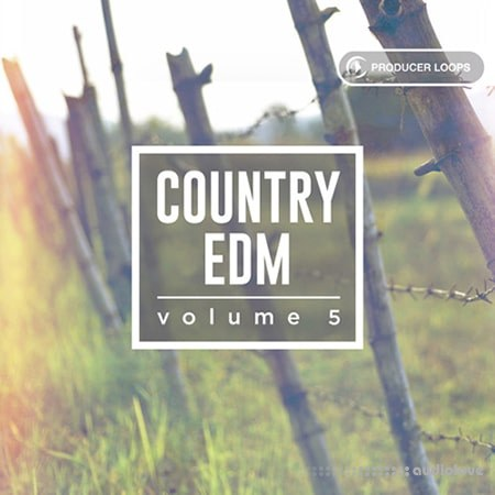 Producer Loops Country EDM Vol.5 ACiD WAV MiDi REX