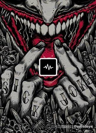 WavSupply E-Trou Joker WAV
