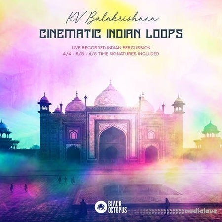 Black Octopus Sound Cinematic Indian Loops WAV