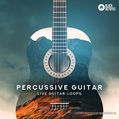 Black Octopus Sound Percussive Guitar WAV