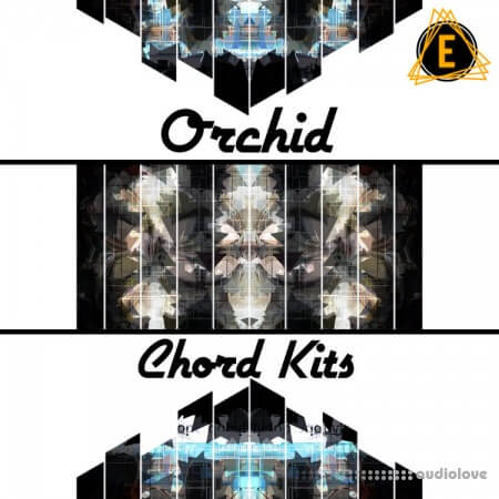 Electronisounds Orchid Chord Kits WAV